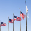American flag on the pole — Stock Photo