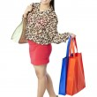 Attractive  lady smiling while holding her shopping bags — Stock Photo #20336711