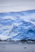 Antarctic Iceberg from the water — Stock Photo
