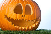 A happy jack o lantern — Stock Photo