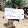 Merry christmas tag among gingerbread men and pine cones — Stock Photo #22413633