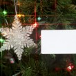 A placard resting on a christmas tree for copy — Stock Photo