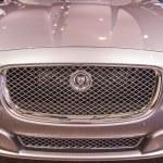 2014 Jaguar XJ Luxary Car — Stock Photo #23880867
