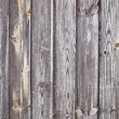 Stock Photo: Wood door