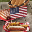 American hotdog sandwich and fries — Stock Photo