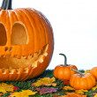 Artistic halloween craft — Stock Photo