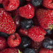 Assorted fresh berries background — Stock Photo