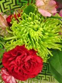 Colorful colourful flowers blossoms with stems bound in a bouquet — Stock Photo