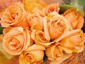 Colorful colourful roses flowers blossoms bound in a bouquet - closeup close-up — Stock Photo