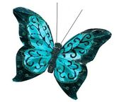 Beautiful gorgeous sea blue cyan butterfly insect, isolated on white background — Stock Photo