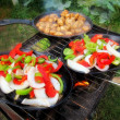 Sizzling healthy fajita chicken beef pork and veggie dinner barbecue grill cookout on a plate — Stock Photo #30149395