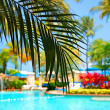 Tropical resort with turquoise swimming pool water and palm trees under blue sky Caribbean Hawaii Hawaiian — Stock Photo