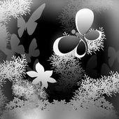 бабочки на черном фоне. плакат — Стоковое фото