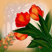 Fond de tulipes — Photo