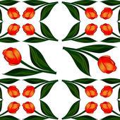 Background of flowers tulips — Stock Photo