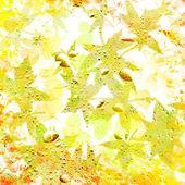 Autumn foliage. Desktop wallpapers. — Stock Photo