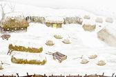 Ländliche landschaft. winter. — Stockfoto
