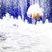 冬季景观. — 图库照片