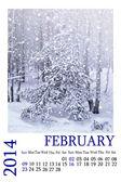 Calendar 2014. February. Winter landscape. Snowfall. — Foto de Stock