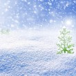 Background of snow. Winter landscape. Christmas tree. — Stock Photo