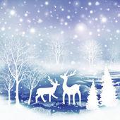 冬の風景. — ストック写真
