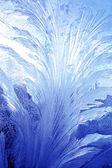 Frostwork — Stockfoto