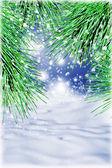 Winter — Zdjęcie stockowe