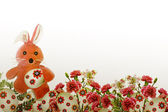 Easter. Bunny and flowers. — Stock fotografie