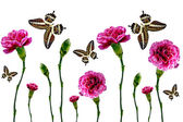 Flowers and butterflies on a white background — Stock Photo
