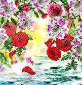 Nature. flowers. — Stock Photo