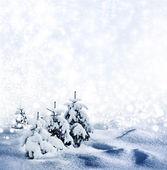 Background of snow. Winter landscape. Photo. — Stock Photo