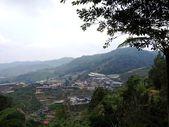 Tanah Rata, Cameron Highlands, Pahang, Malaysia. — Stock Photo