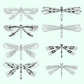 Vector set of dragonflies — Stock Vector