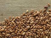Pinto beans — Stock Photo