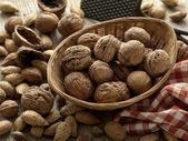 Walnuts — Stock fotografie
