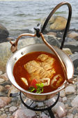 Fish chowder from Hungary (lake Balaton) — Stock Photo