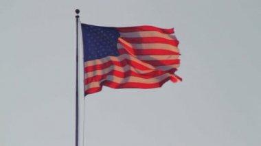 USA flag waving — Stock Video
