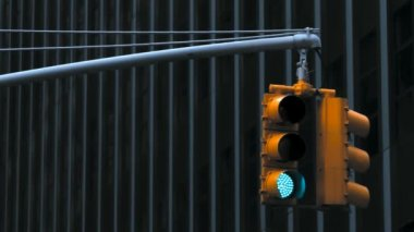 Traffic Light — Stock Video