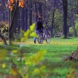 A man with a bicycle walks in the City Park — Stock Video #48927857