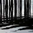 Rippling lake surface and silhouettes of wooden posts making pattern of vertical lines — Stock Video #48928047