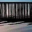 Rippling lake surface and silhouettes of wooden posts making pattern of vertical lines — Stock Video #48928249