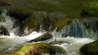 Water running over mossy rocks — Vídeo Stock