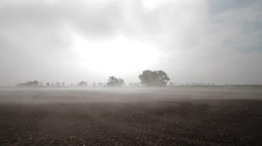 Misty agricultural scenery in Hungary — Stok video