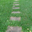Stock Photo: Pathway in the park.