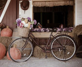 Bicycle and flowers. — Stock Photo