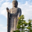 Stock Photo: Standing Buddha
