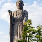 Standing Buddha — Stock Photo