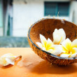 Tropical flower and coconut — 图库照片