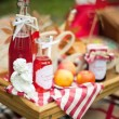 Picnic in the Park - Stock Photo