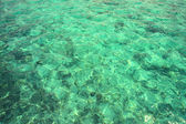 Clear waters of the Pacific Ocean — Stock Photo